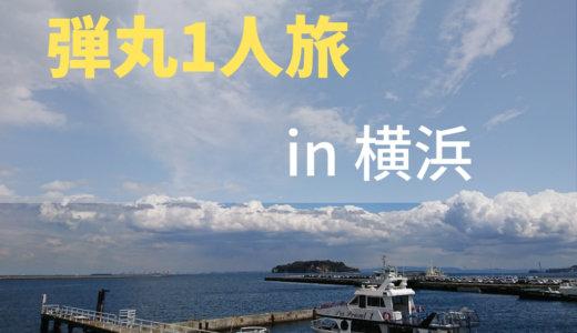 【1人旅】名古屋→神奈川のノープラン1泊2日旅。横須賀~横浜の観光地&グルメ